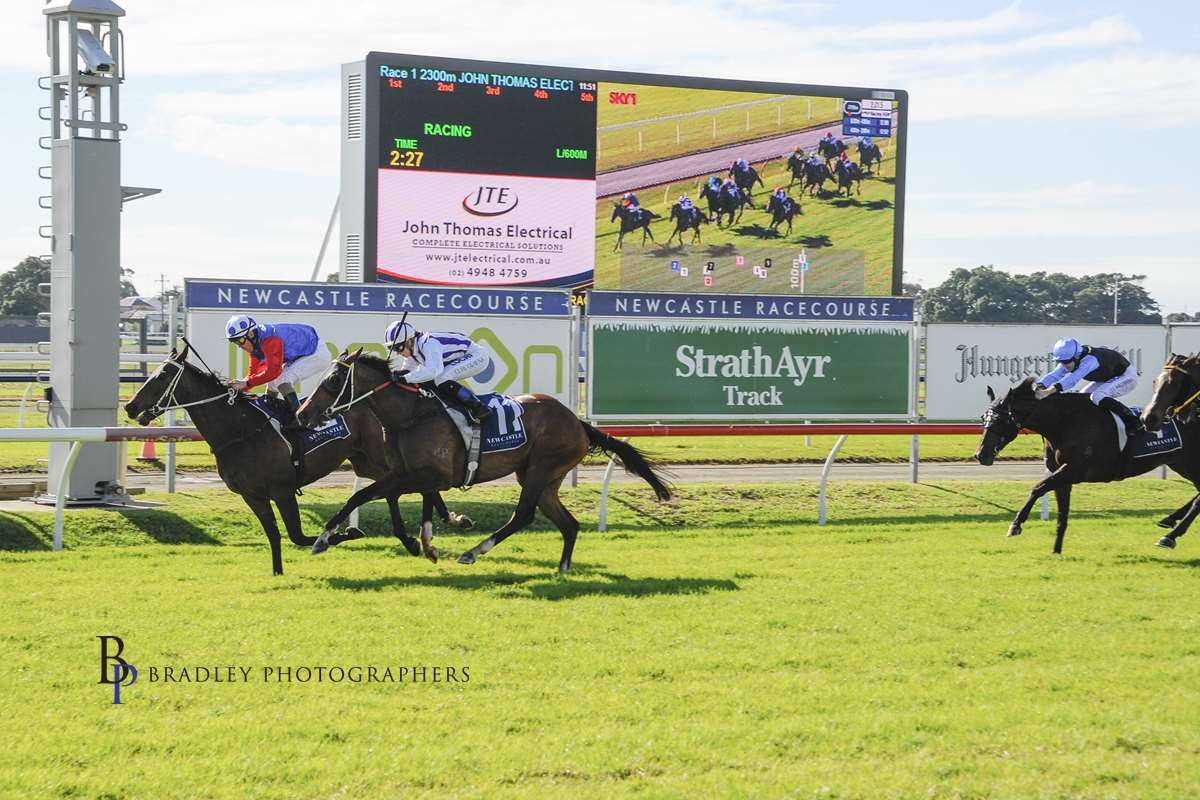 Image courtesy Bradley Photographers - Shaun wins on Mushroom Rock for trainer John Steinmetz, Newcastle 29/06/2019.