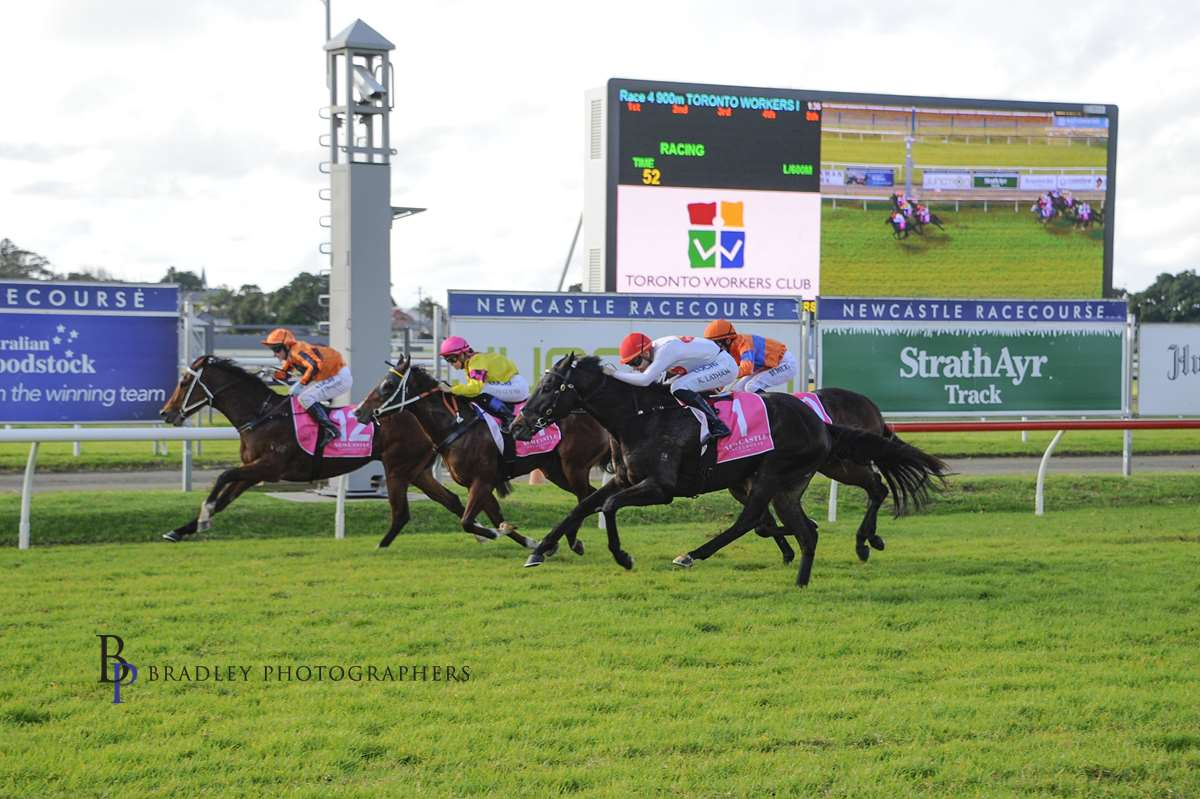 Image courtesy Bradley Photographers - Aloneinabaa looks to have been beaten at Newcastle, but actually got there narrowly for Keagan, Richard and Michael Freedman.