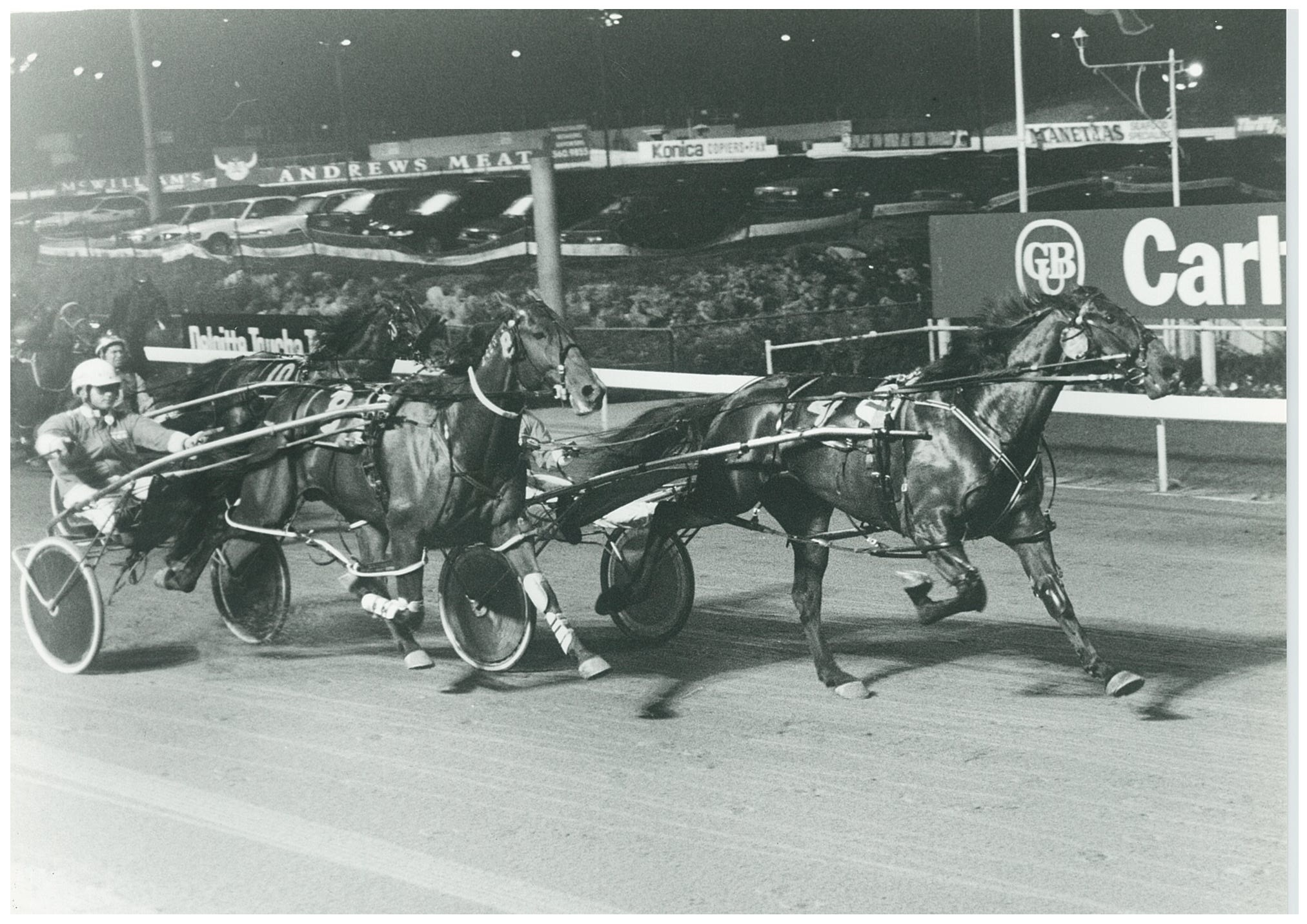 Image courtesy National Trotguide - Bastille Beggar in one of his numerous Harold Park wins. In this one he defeated Rainbow Knight (Darren Binskin).