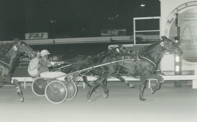 Image courtesy National Trotguide - Bastille Beggar wins at Albion Park 1995.