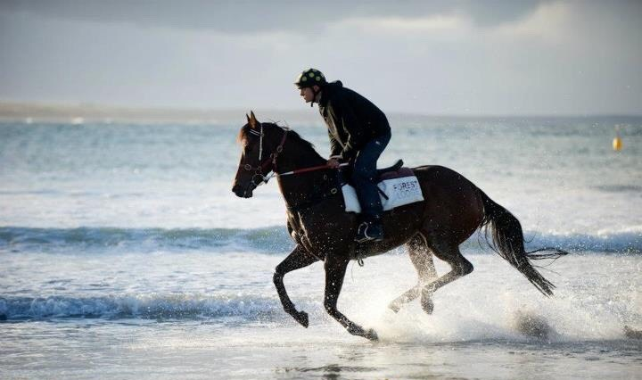 Daniel loves nothing more than riding one beach work himself required.