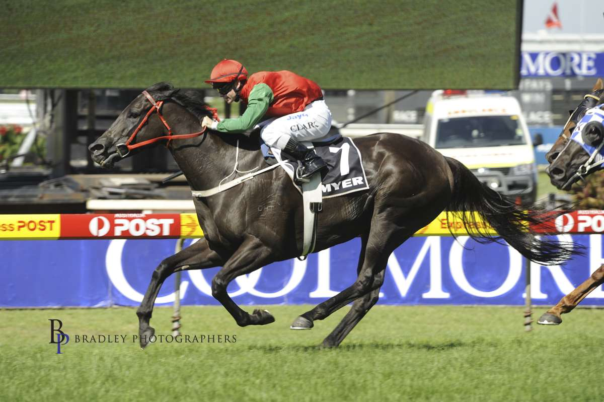 Image courtesy Bradley Photographers - Tim in one of his fourteen wins on his all time favourite, Hot Danish.