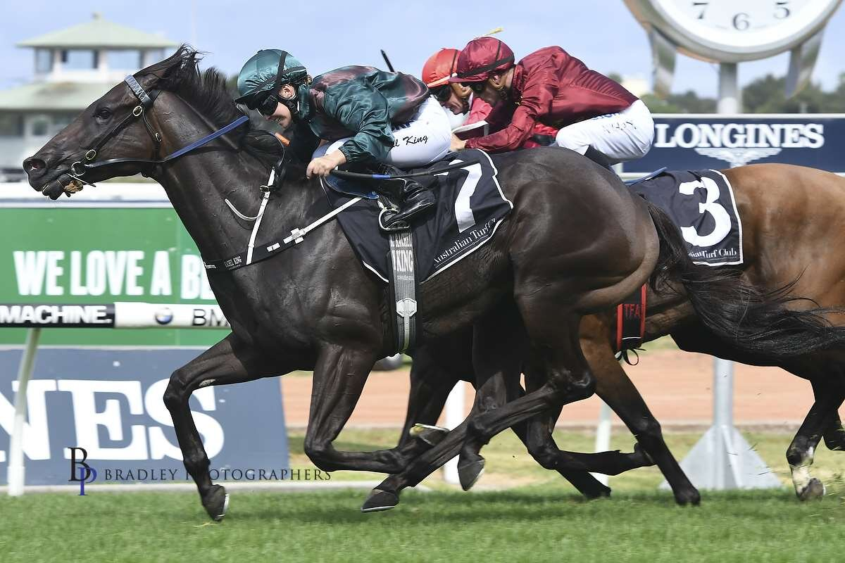 Image courtesy Bradley Photographers - Rachel wins on one of her favourites Lanciato at Rosehill 27/01/2018.