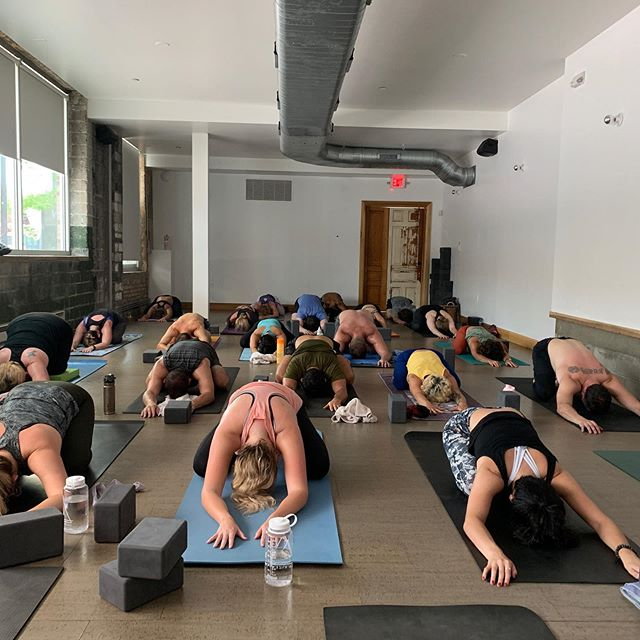 Deep gratitude to each of you who joined me this morning for my first class back @citizenyoga It feels so good to return! And for the rest, I'm back to my full Citizen Yoga schedule! Hope to see you soon! #practicepracticepractice #whatdifferencedoesadifferencemake #summertimepractice #toddtesenyoga #citizenyoga #citizenyogaroyaloak #citizenyogabloomfield #citizenyogadetroit #citizenyogacleveland
