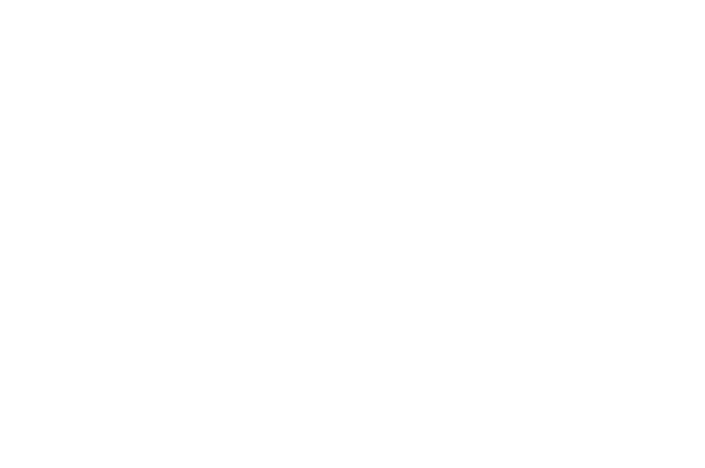 Nordic noir logo gin made in norway.png