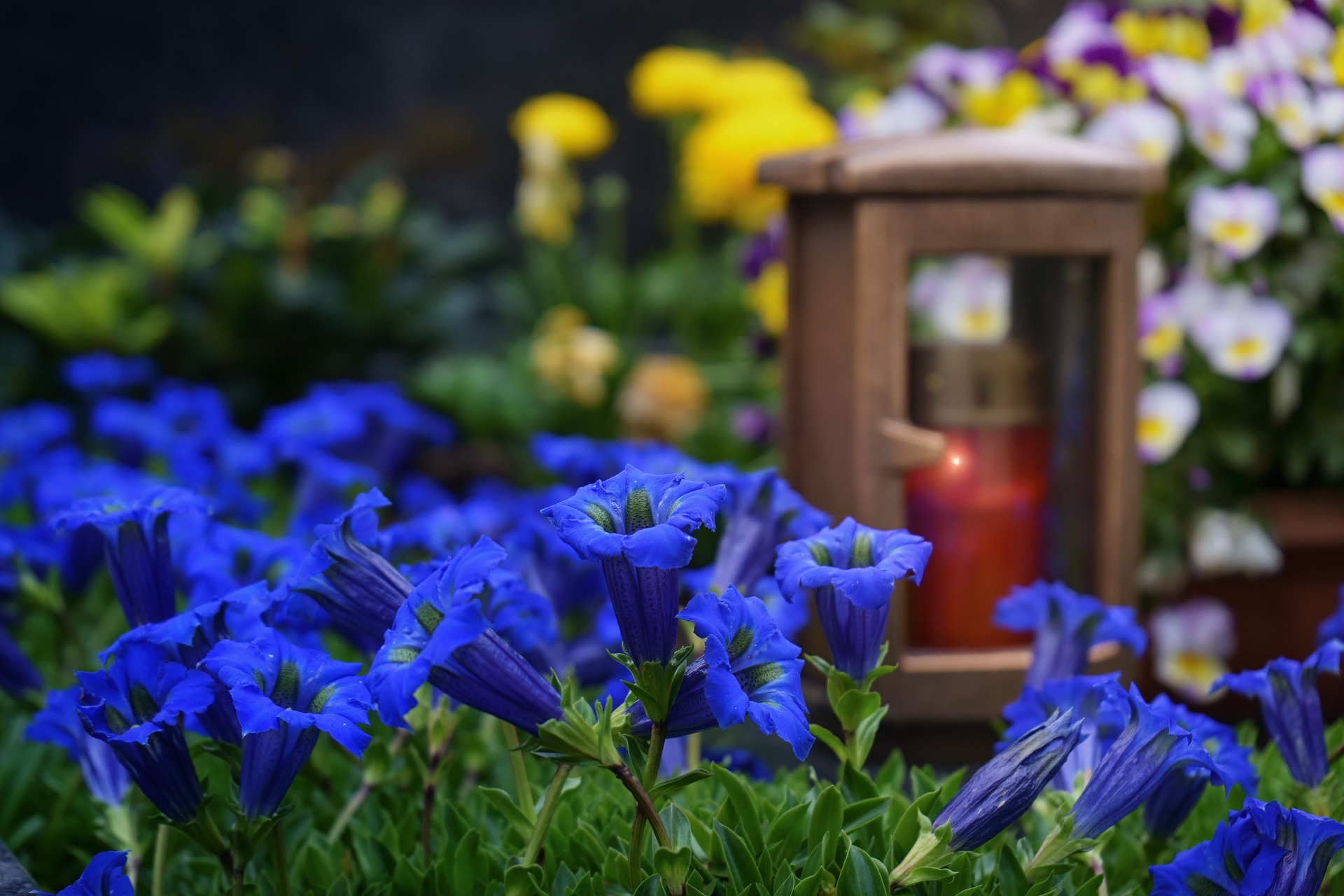 Floral Tributes - Flowers can play an important role at a funeral, a visual tribute to your loved one or friend, we understand that deciding on the right tribute is not always an easy decision.