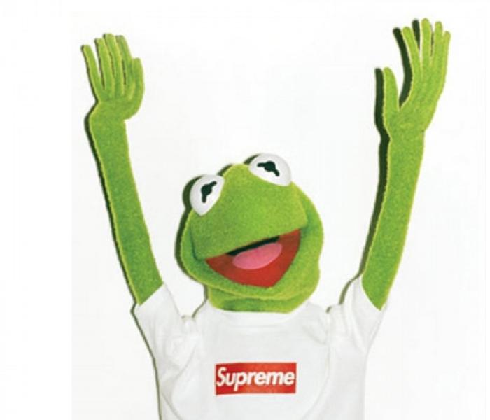 Supreme-Kermit-The-Frog-Plush-Doll-1-900x900 (1).jpg