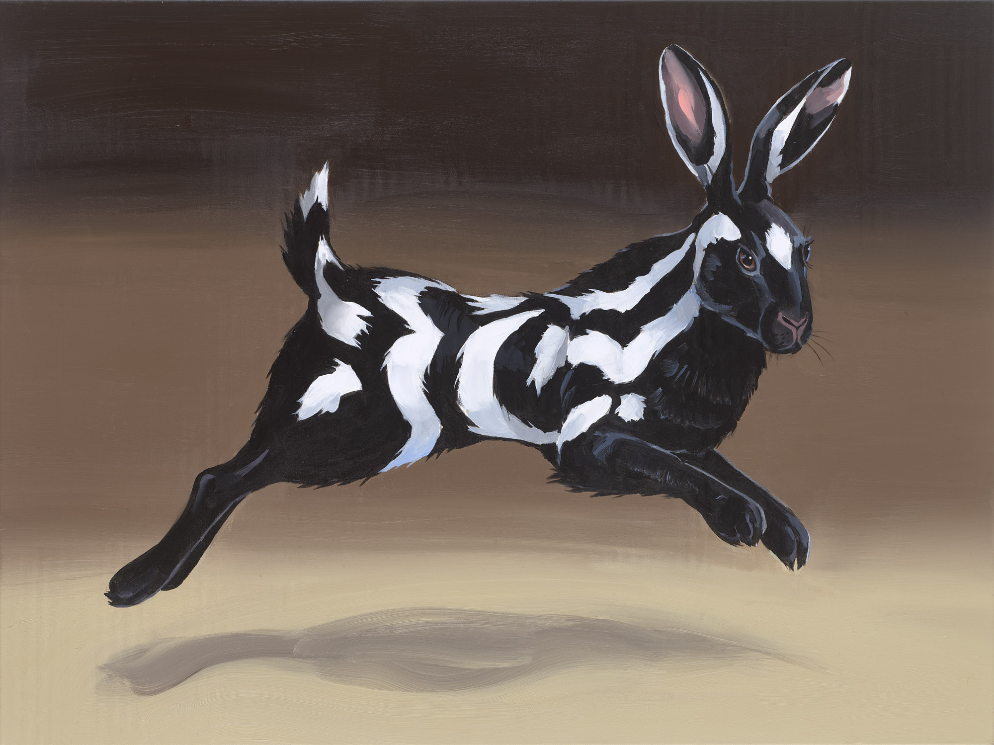Hybrid VII (Spotted Skunk) , 2017, Acrylic on canvas, 75x100 cm