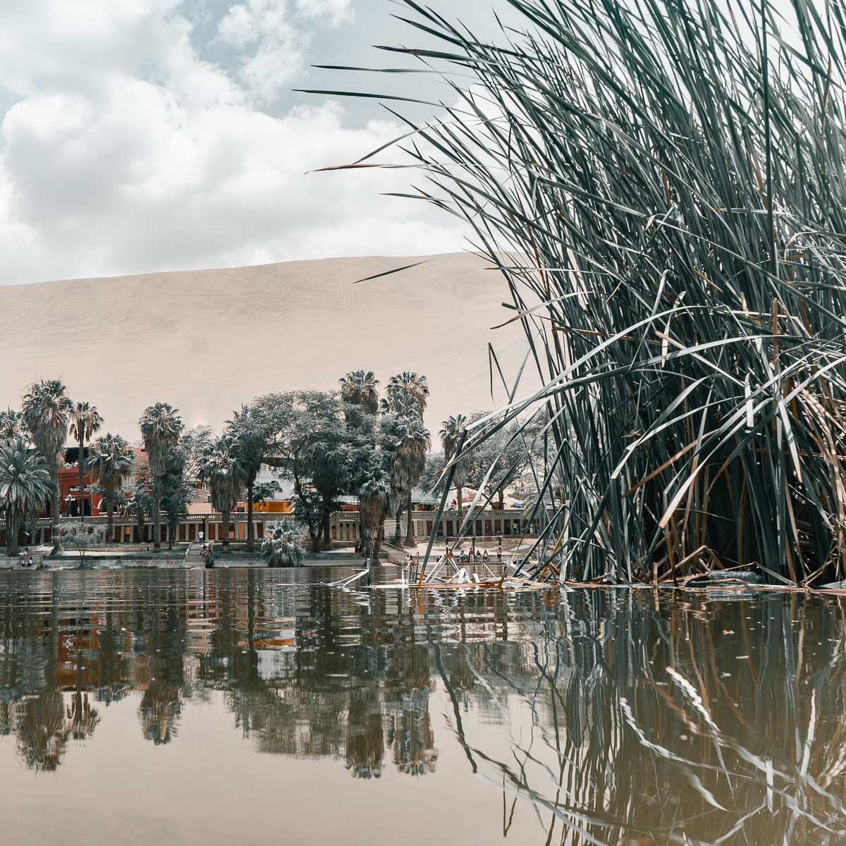 Oasis of Huacahina