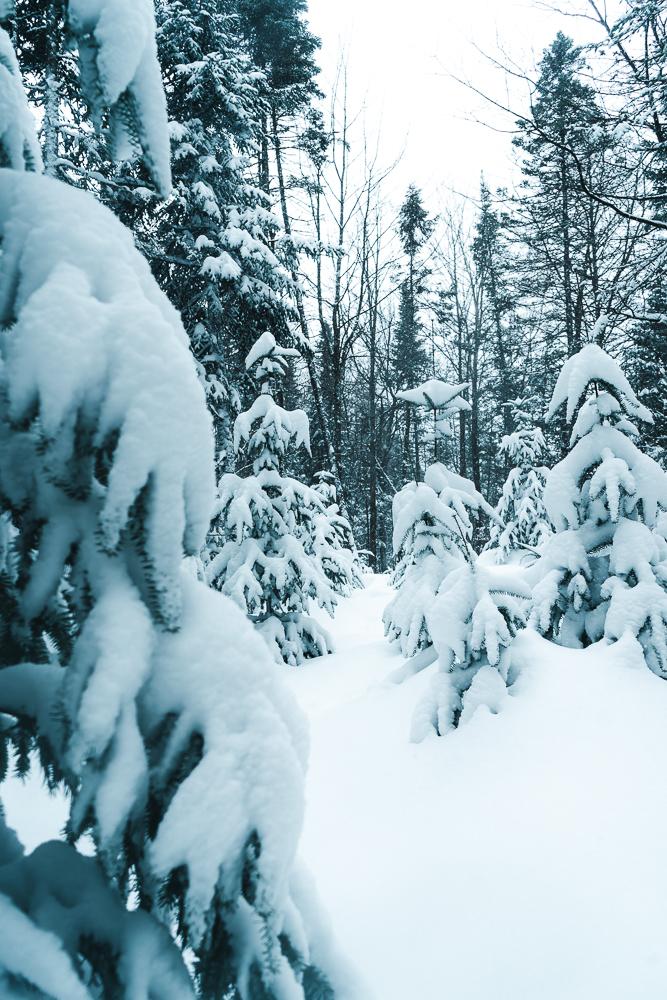 Winter of Québec - Anthony Ledoux - Photographer and Filmmaker - Photographe2.jpg
