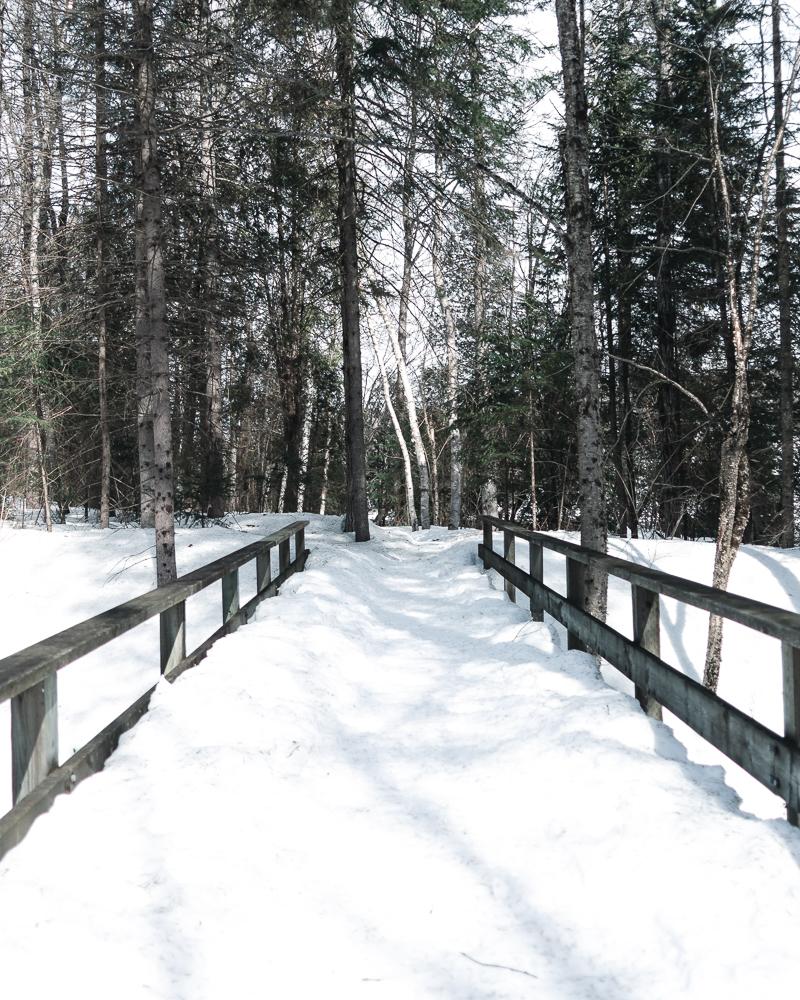 Winter of Québec - Anthony Ledoux - Photographer and Filmmaker - Photographe21.jpg