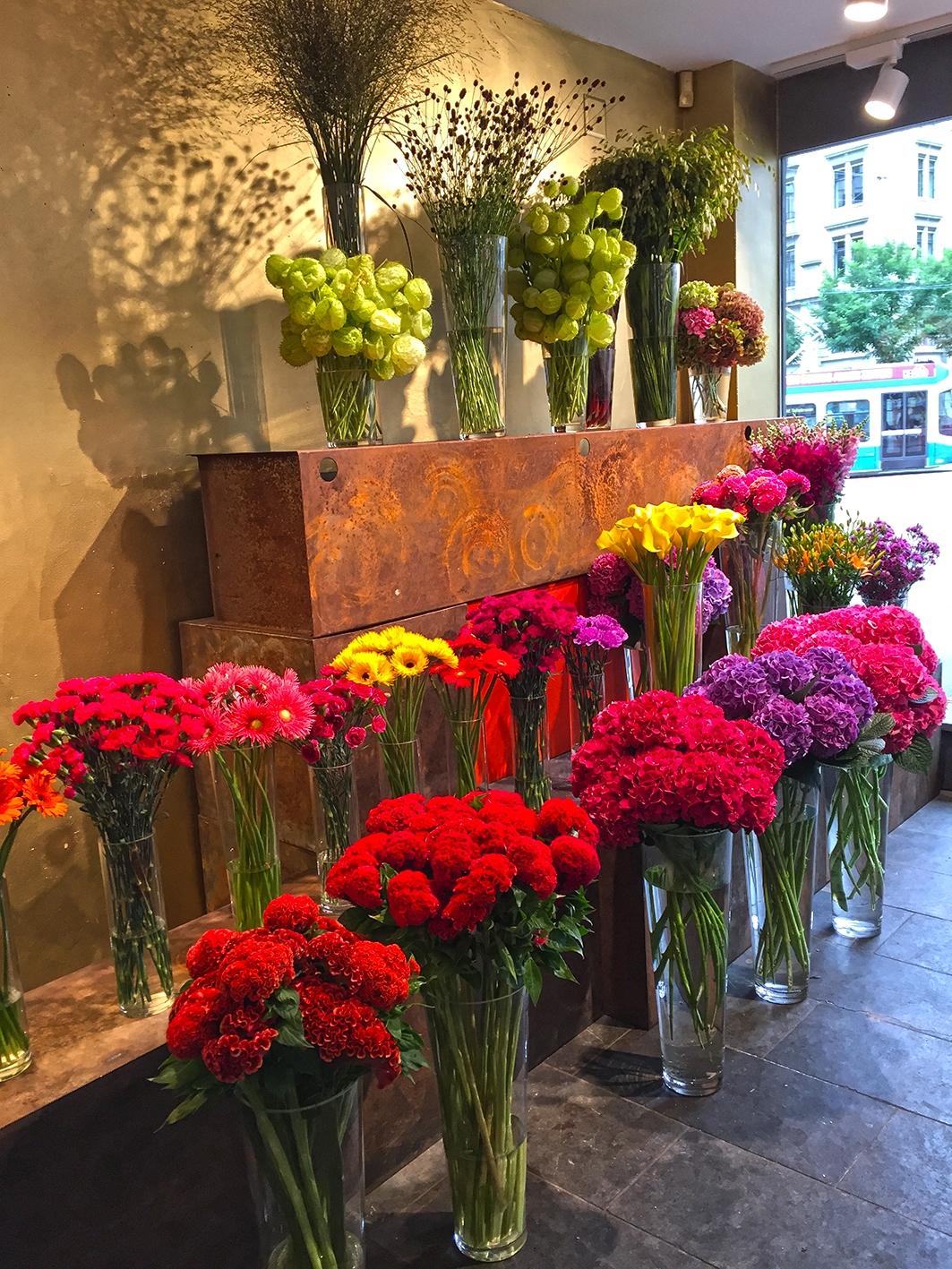 Blumen_am_Stauffacher6.JPG