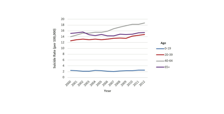 Figure 4. Death rates from suicide by age group, 2000-2012.  Suicide in the USA: Fact Sheet Based on 2012 Data (2014). American Association of Suicidology. http://www.suicidology.org/Portals/14/docs/Resources/FactSheets/USA2012.pdf
