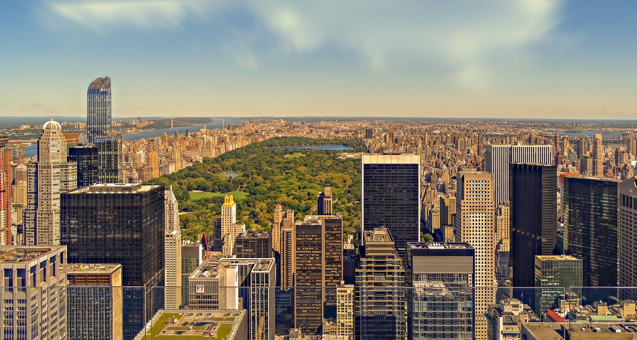 Central Park via Pexels.jpg