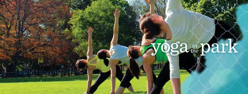 YITPcoverphoto.jpg