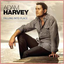 album-adam-falling.jpg
