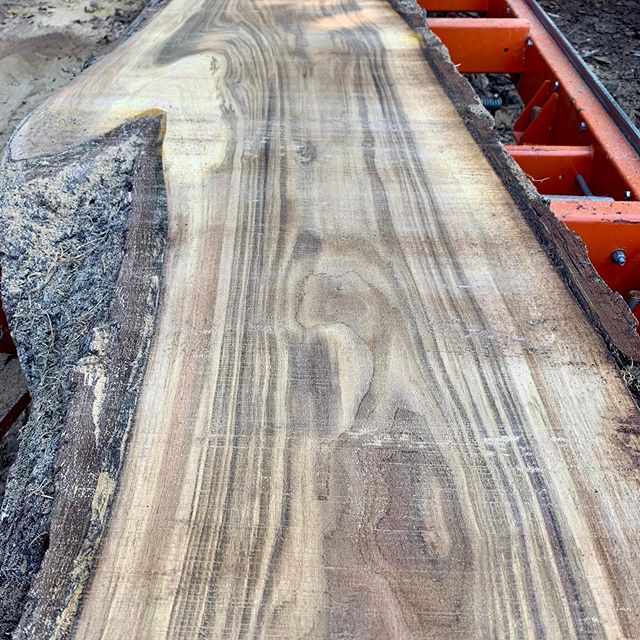 Check out this wood we cut with friends. Even the chicken's check'in it out * * * * #liveedgewood #liveedgeslabs #diy #woodslab #slabs #hardwood #walnut #logs #woodtable #woodbench #woodmizer #woodgrain