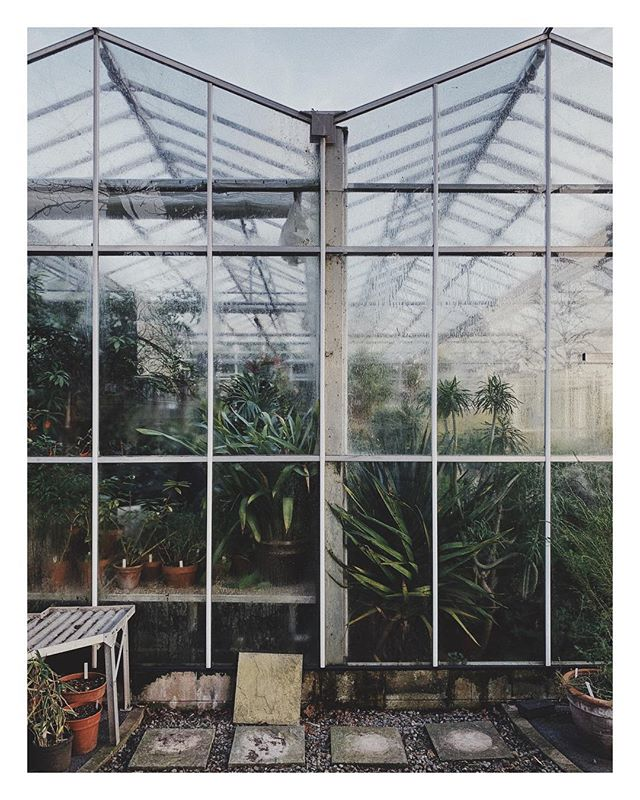Bristol Botanic