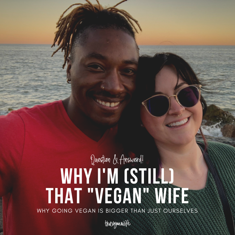 that-vegan-wife-blog-why-i-am-still-vegan.png