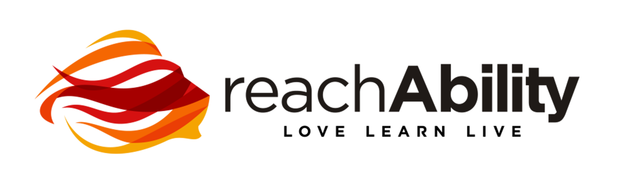 reachAbility-black-withtag.png