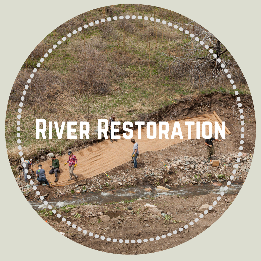 River-restoration-CPRW.png