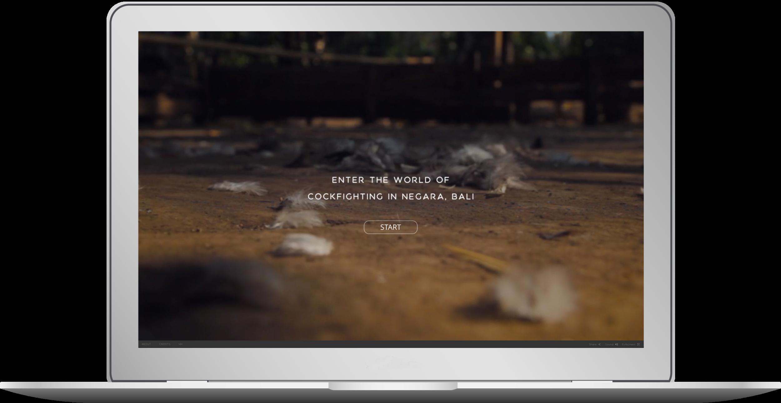 tajen-interactive-laptop.png
