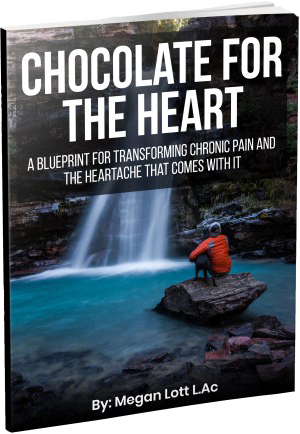 Chocolate for the heart by Megan Lott