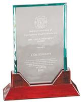 Lifetime Award.png