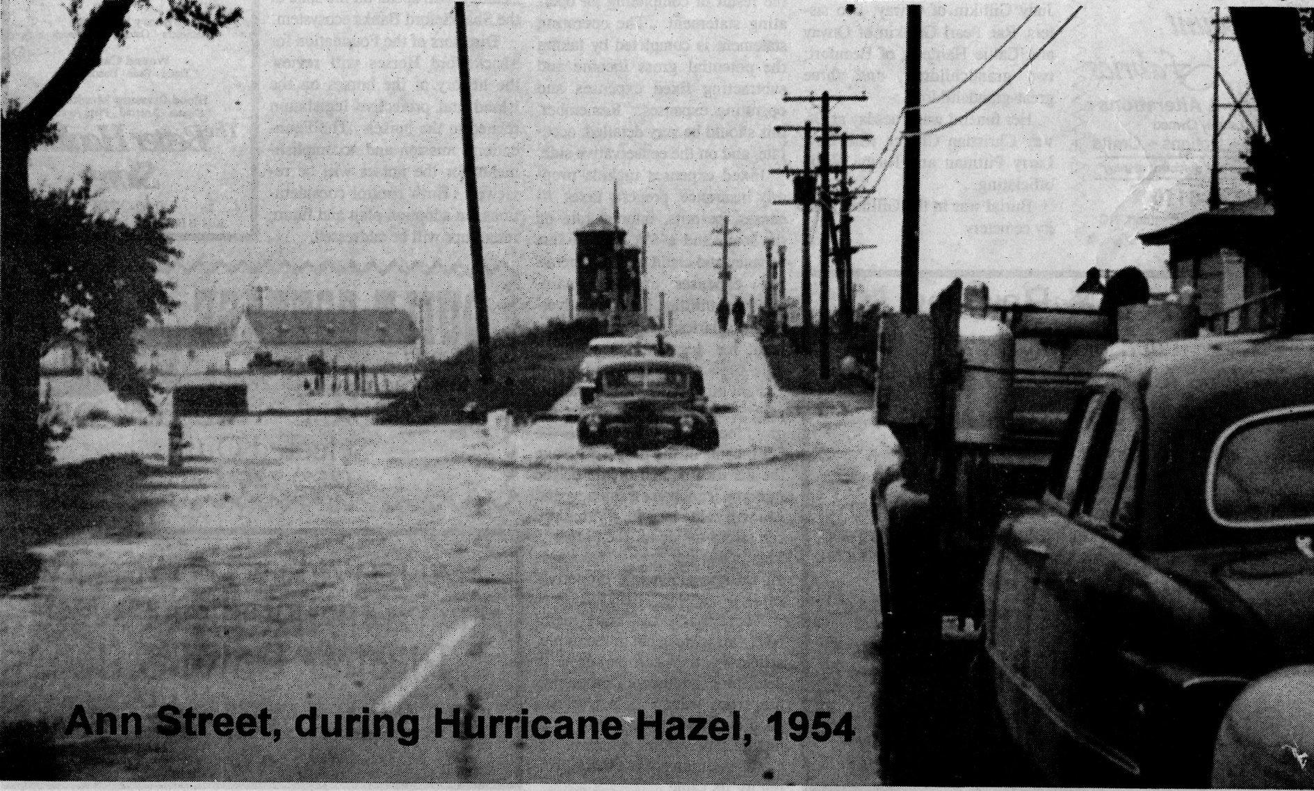 Hazel Beaufort Bridge.jpg
