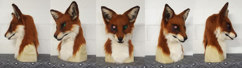 """""""SLAGAR"""" Red Fox"""