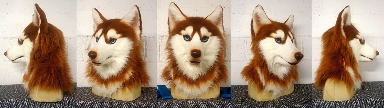 """""""DENALI"""" Red Siberian Husky"""