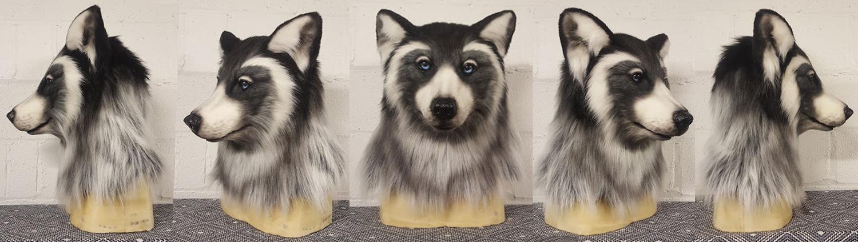 """""""FECKWOLF"""" Fantasy Wolf"""