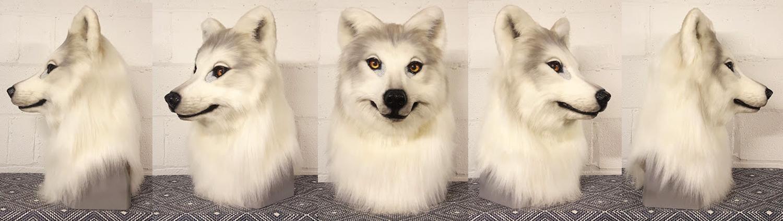 """""""ARIKLA"""" White Wolf"""