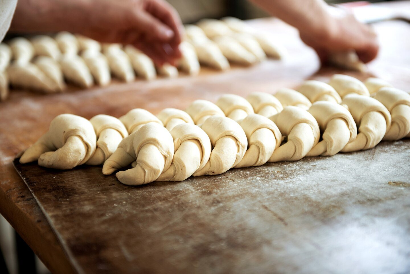 learn to bake croissants in a real bakery -