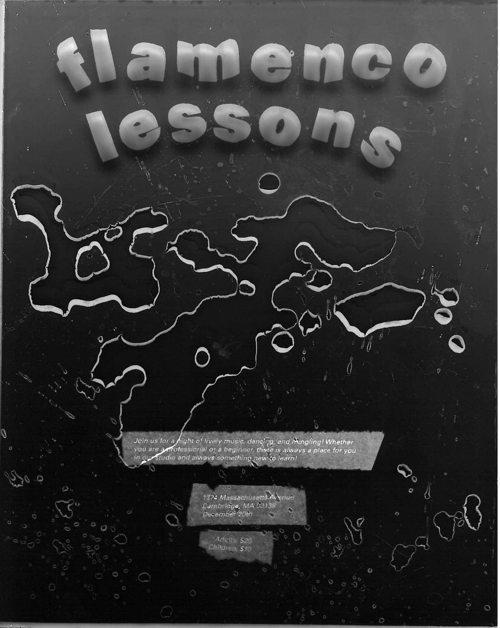 Flamenco Lessons.jpg