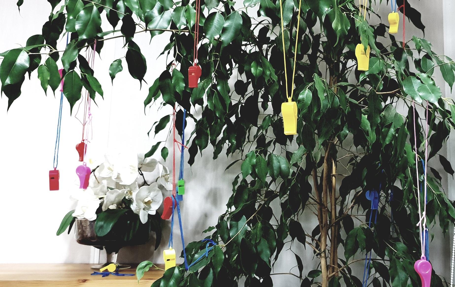 Laila garde un souvenir de l'opération sifflets dans son bureau. Credit Photo: Eyala