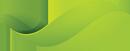 MapledeneFinancial-AboutUs-LeafBottom.png