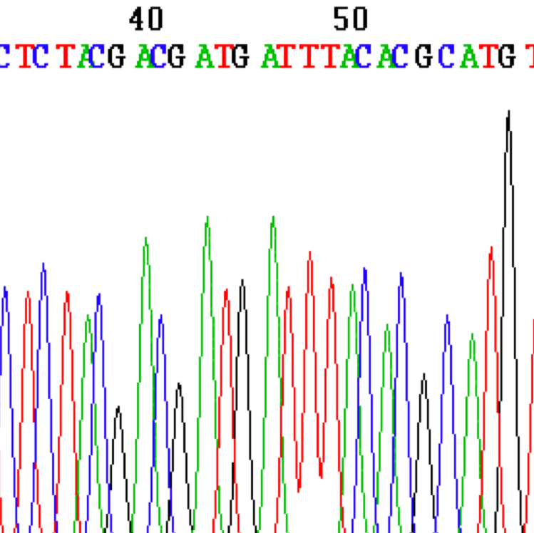 genome 3.png