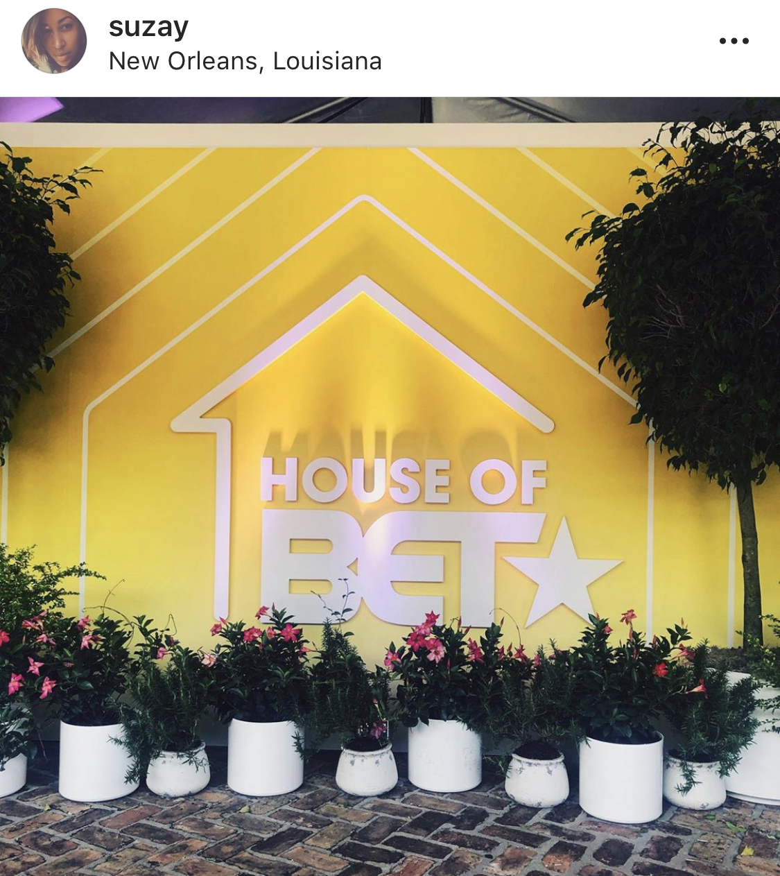 "Multiple's of the same thing in different forms is always eye catching. Here we have the white pots, flanked by two larger trees with the ""House of BET"" logo on the wall. Notice how ""House of BET"" is also similar but different from the BET HER brand presentation."