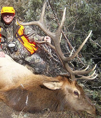 piney-valley-colorado-exclusive-elk-guided-hunt.jpg