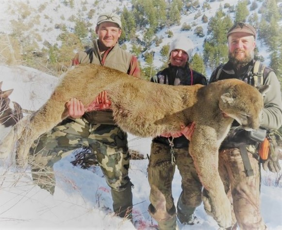 jeff carpenter mountain lion with guide crew.JPG