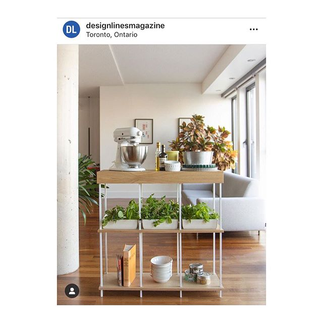 Merci à @designlinesmagazine pour la publication - thanks for the share 👌🏽💛 #torontodesign #ceramics #nogreenthumbneeded #madeincanada #indoorgarden #homedecor #designinterieur