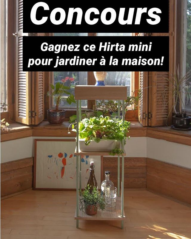 "Concours - Contest (english will follow) Gagnez un Hirta mini vert mat d'une valeur de 550$ tout équipé pour démarrer votre jardin intérieur à la maison!  Règlements:  1- Aimez la publication  2- Commentez la photo en « taggant » 2 amis fans de jardinage 3- Suivez-nous sur Facebook ou instagram @ilotculture  Le concours se termine le 24 juin 23h59  Le/la gagnante sera annoncé/e le 25 juin à 9h sur nos réseaux sociaux  Le prix sera prêt à être récupéré le 24 juillet à notre atelier sur Waverly *livraison à vos frais, 13 ans et +, ouvert aux Canadiens et Américains . . Contest Earn a $550 mini Hirta to start your indoor garden at home! Regulations: 1- Like this publication 2- Comment on the picture by ""tagging"" 2 friends gardening fans 3- Follow us on Facebook or instagram @ilotculture  Contest closes June 24 23:59 The winner will be announced on June 25th 9am on our social networks The price will be ready for pick up on July 24 at our Waverly street workshop * Delivery at your expense, 13 years old and over, open to Canadians and Americans . . . . . #contest#concours#indoorgarden#homedecor#jardin#jardinage#jardininterieur#ilotculture#homehgardening#ledgrow#eatbio#gardening#freshherbs#urbanfarming#growhereyouare#hydroponic"
