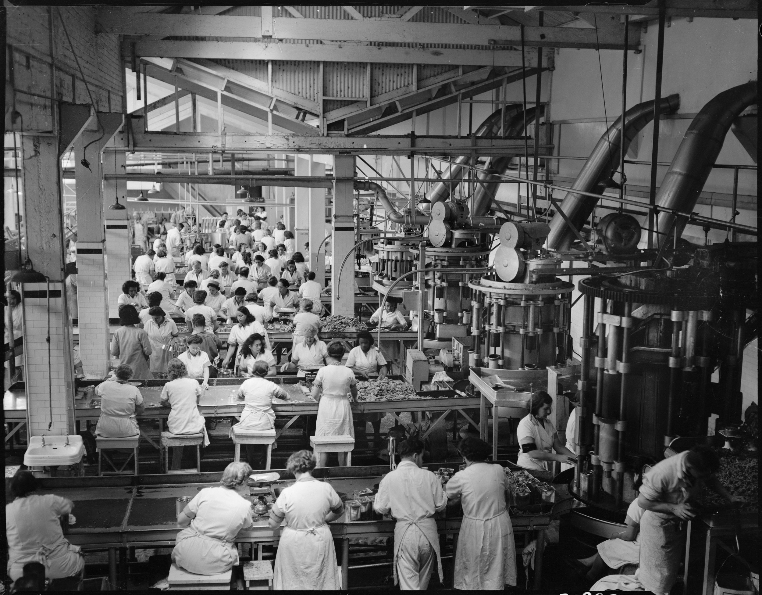 Walker, W (Mr), 1940s-1950s. Interior of cannery at Westfield Freezing Works, Otahuhu, Auckland. Tourist and Publicity. Ref: 1/2-034201-F. Alexander Turnbull Library, Wellington, New Zealand.