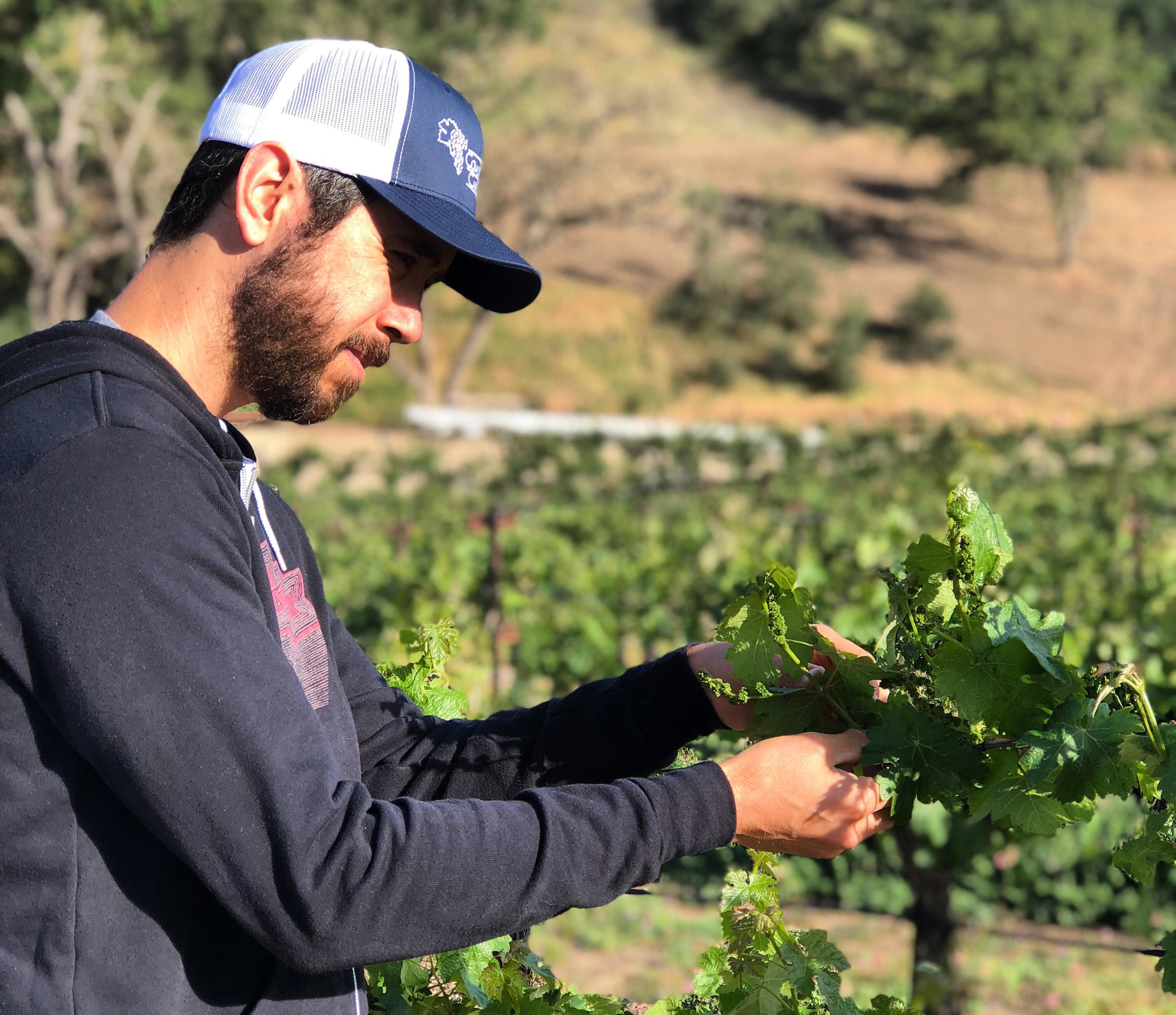 Dusty Nabor - Winemaker Dusty Nabor's roots are in exclusive, low production boutique wines. We wanted to bring this knowledge and craftsmanship to a wine with an affordable price on a larger scale. NSO Wine was born.