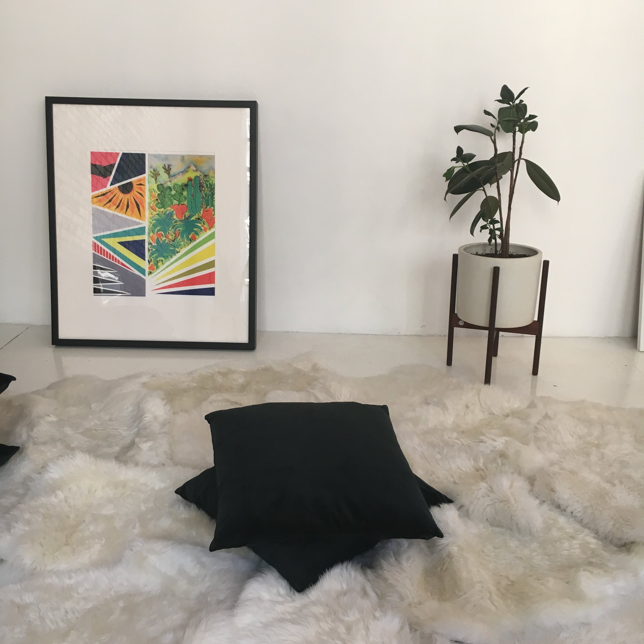 Blank Studio with The Sill plants and 20x200 artworks