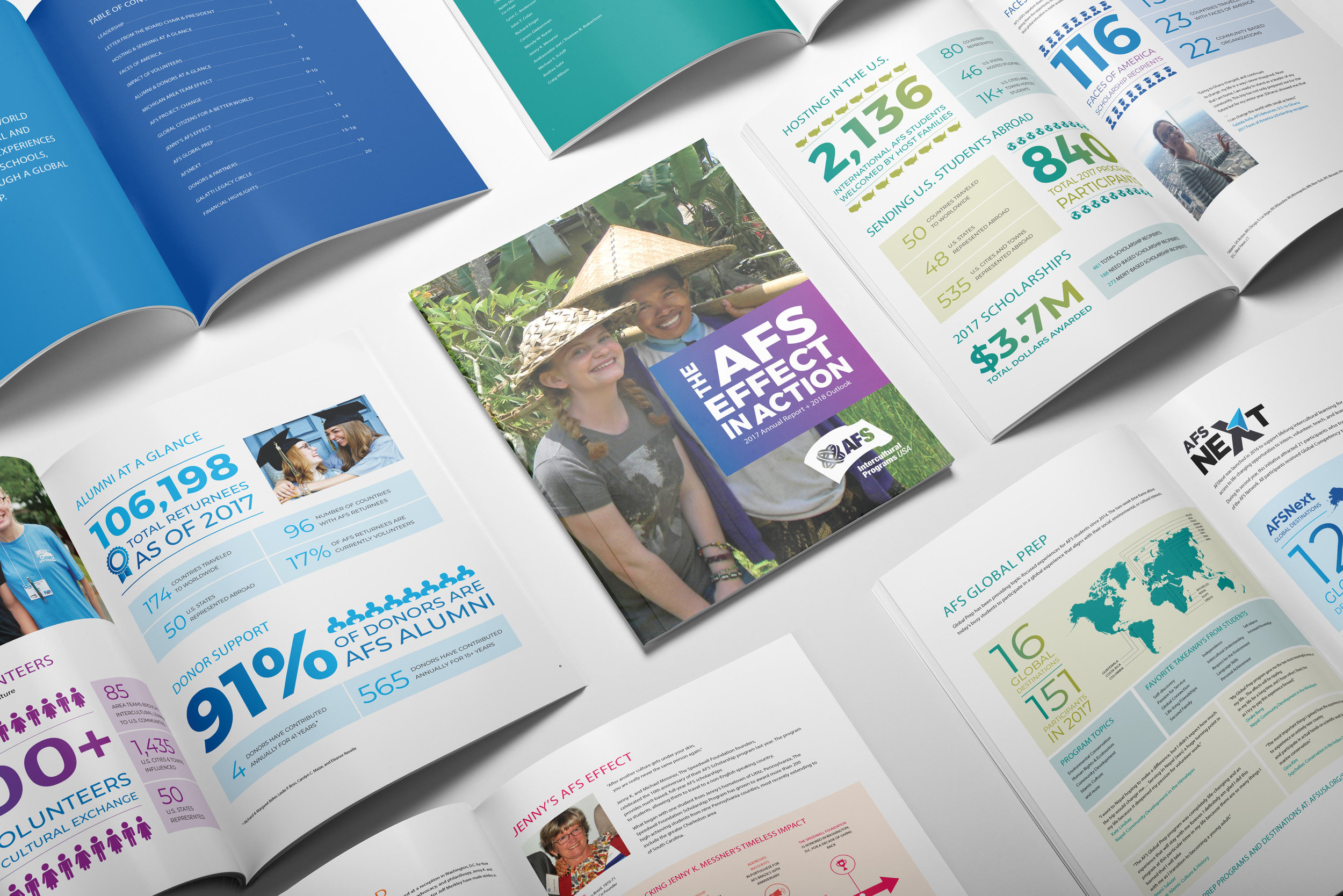 AFS-USA - Annual Report 2017