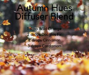 Autumn-HuesDiffuser-Blend-300x251.png