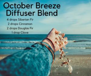 October-Breeze-Diffuser-Blend-2-300x251.png