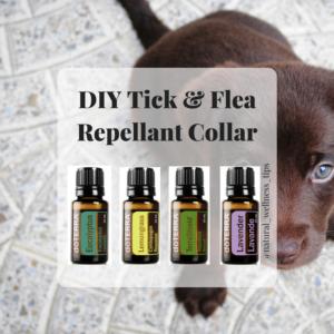 DIY-Tick-Flea-Repellant-Collar-1-300x300.png